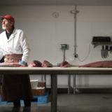Sierra Gold Seafood Butcher